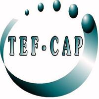 Tef - Cap Industries Inc.